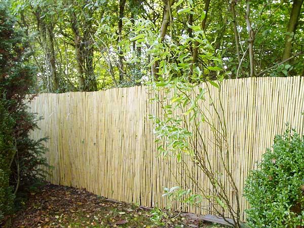 Bambus Matte Befestigung Des Sichtschutzes Nützliche Tipps